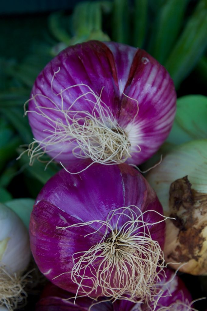 San Juan Capistrano Certified Farmers Market purple onions