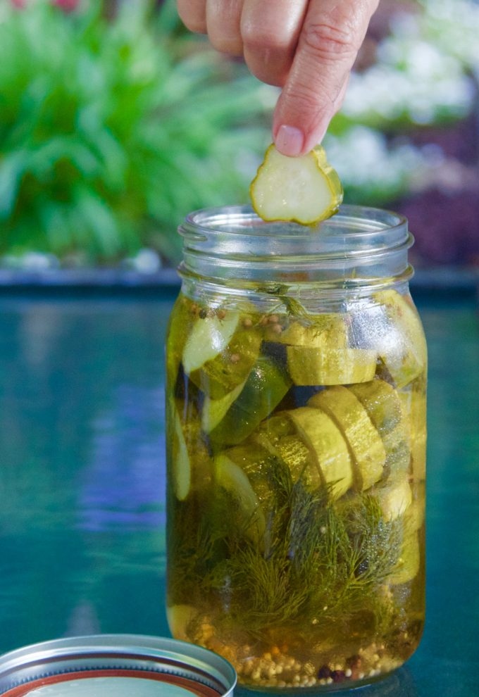 Jalapeño Garlic Quick Dill Pickles chip pull