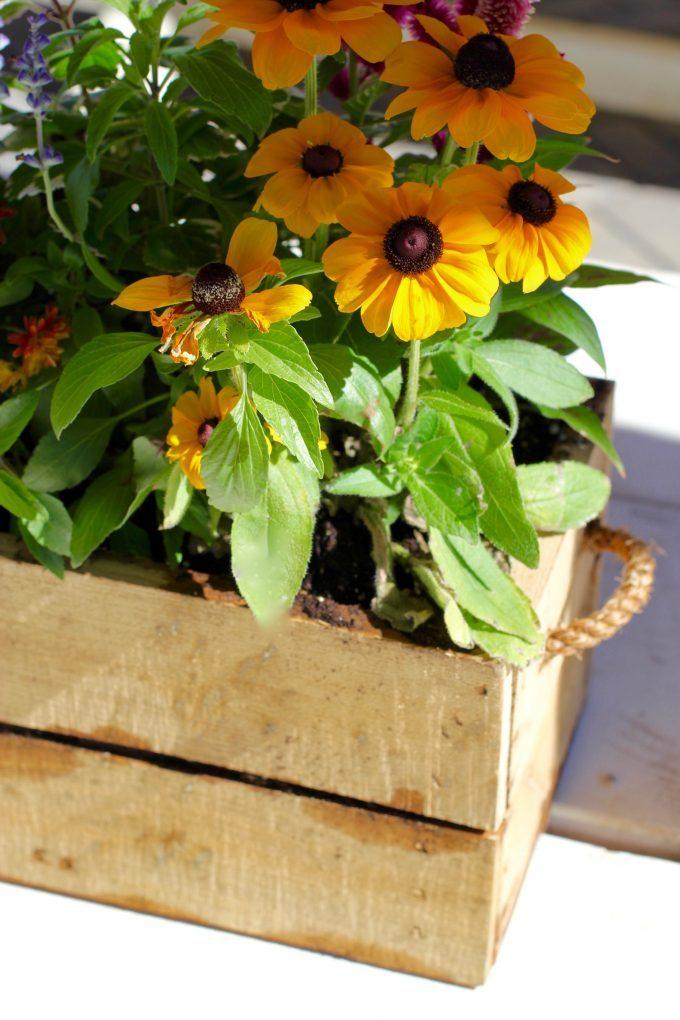 Magnolia Market At The Silos | Chip & Joanna Gaines ~ HGTV Fixer Upper flower box