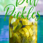 A large glass quart jar with thick dill pickle chips inside and a person pulling one pickle chip from the jar to eat it!