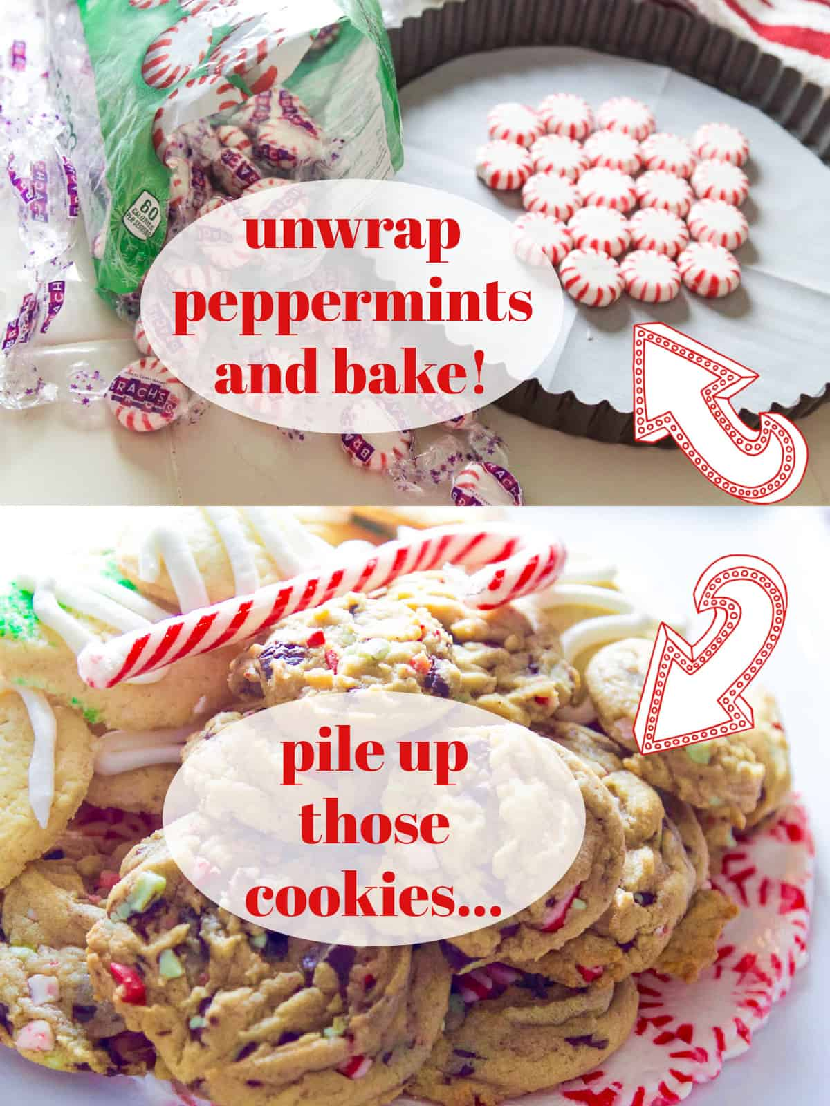 A collage of how to make a peppermint candy plate in a small low tart pan for Christmas.