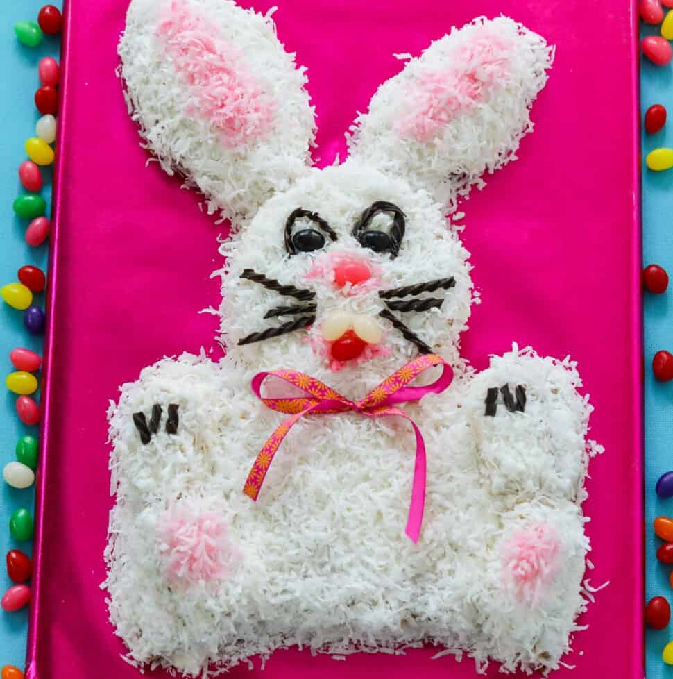 An adorable bunny cake on a hot pink background surrounded with jelly beans.
