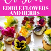 An ad for making Crostini with edible flowers and herbs.