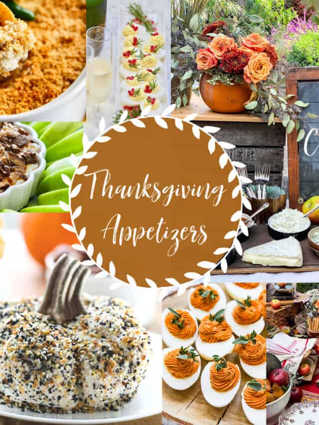 A collection of Thanksgiving appetizers with recipe ideas, and party decorating tips for a Fall party.